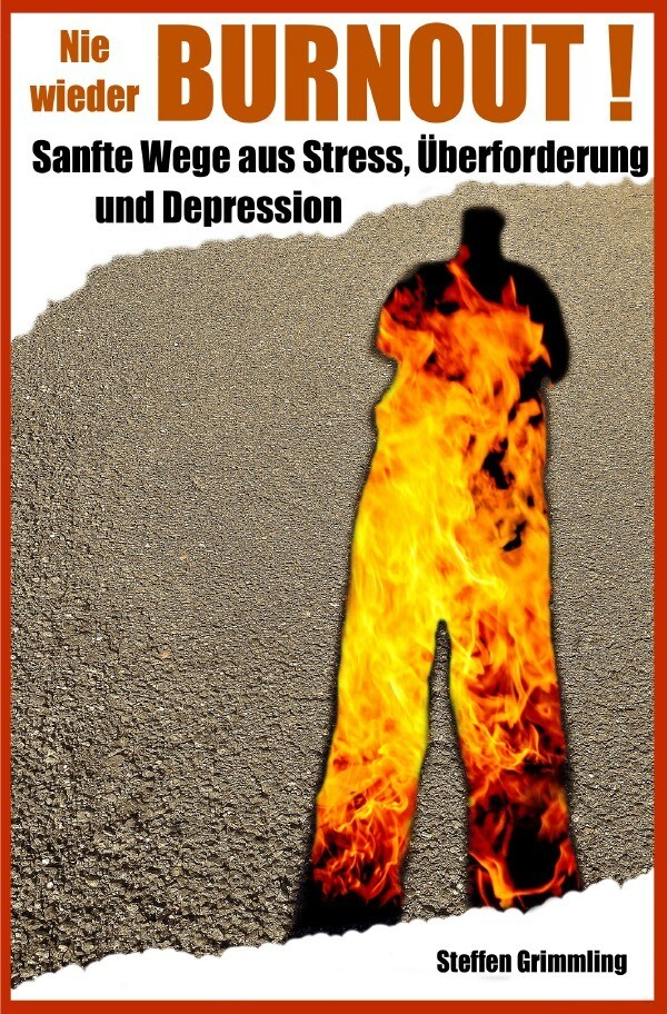 Nie wieder Burnout! als Buch (kartoniert)