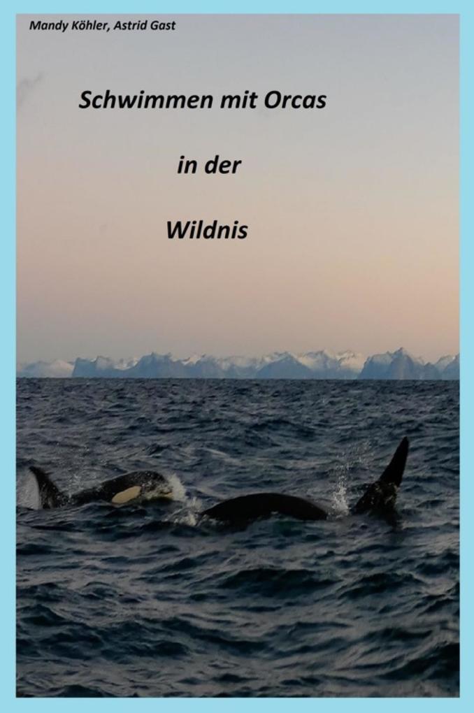 Schwimmen mit Orcas in der Wildnis als eBook epub