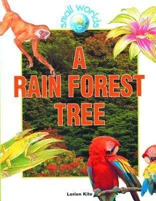 A Rain Forest Tree als Buch (gebunden)