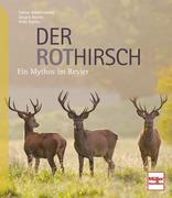 Der Rothirsch