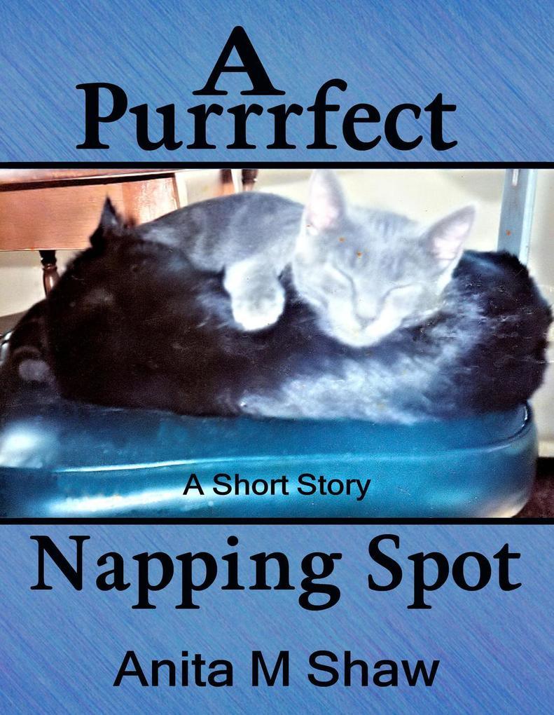 A Purrrfect Napping Spot als eBook epub