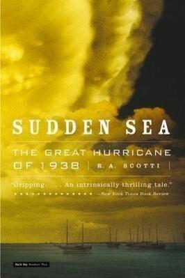 Sudden Sea als Taschenbuch