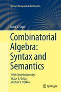 Combinatorial Algebra: Syntax and Semantics