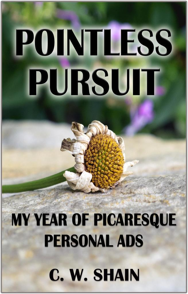 Pointless Pursuit: My Year of Picaresque Personal Ads als eBook epub