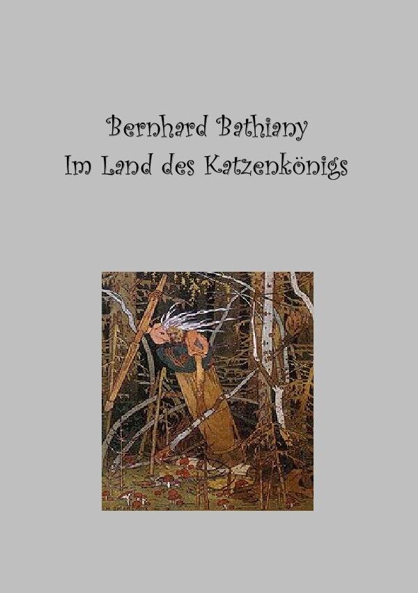 Im Land des Katzenkönigs als Buch (kartoniert)