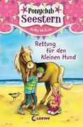 Ponyclub Seestern 1 - Rettung für den kleinen Hund