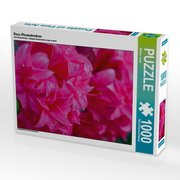 Rosa Rhododendron (Puzzle)