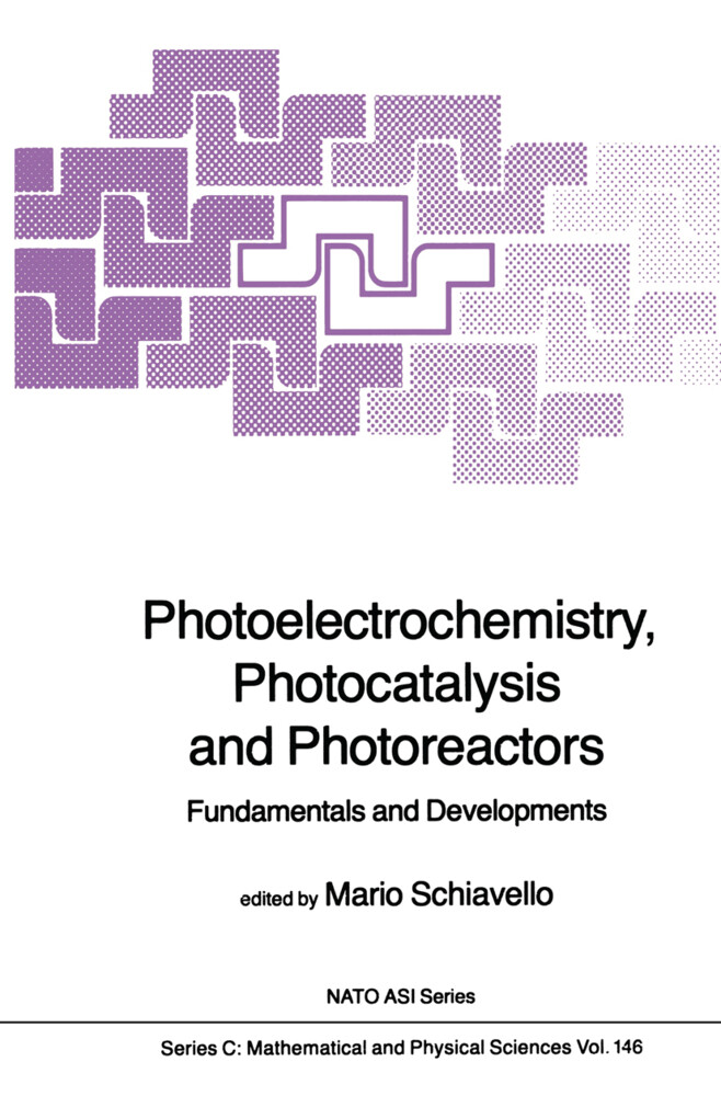 Photoelectrochemistry, Photocatalysis and Photoreactors Fundamentals and Developments als Buch (gebunden)