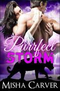 Purrfect Storm (Purrfect Mates, #2)