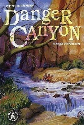 Danger Canyon als Buch (gebunden)