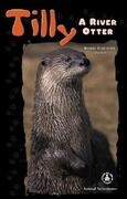 Tilly: A River Otter