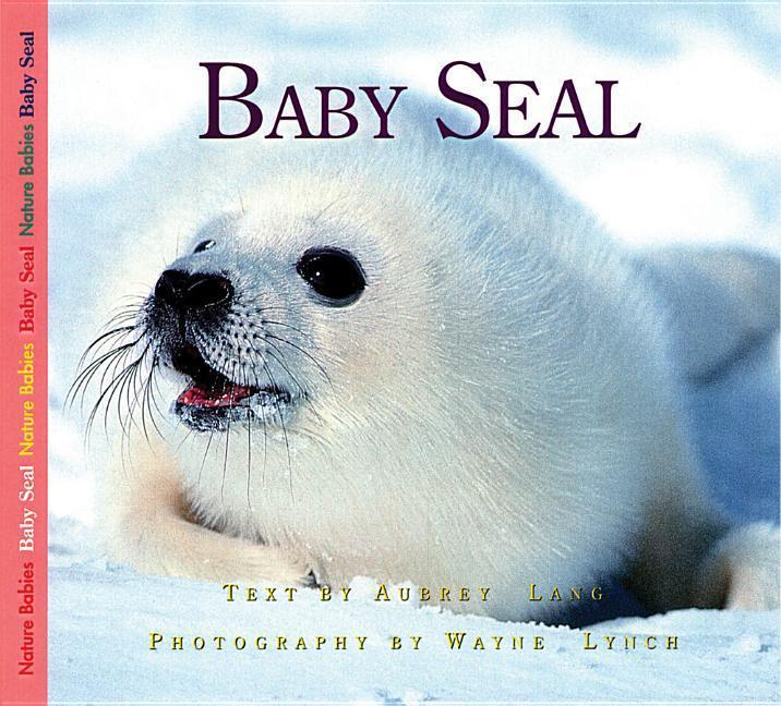 Baby Seal als Taschenbuch
