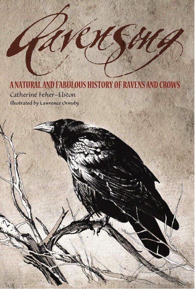 Ravensong als Taschenbuch