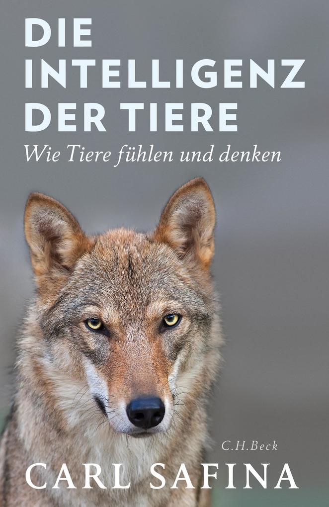 Die Intelligenz der Tiere als Buch (gebunden)