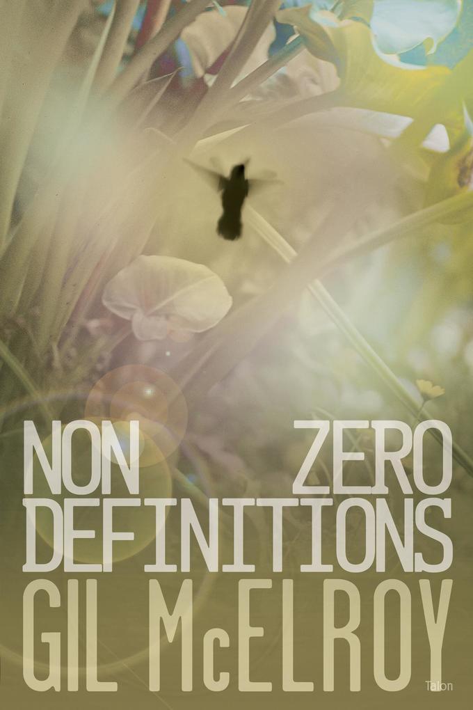 Nonzero Definitions als Taschenbuch