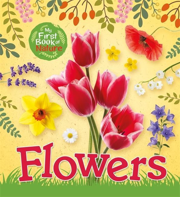 My First Book of Nature: Flowers als Buch (gebunden)