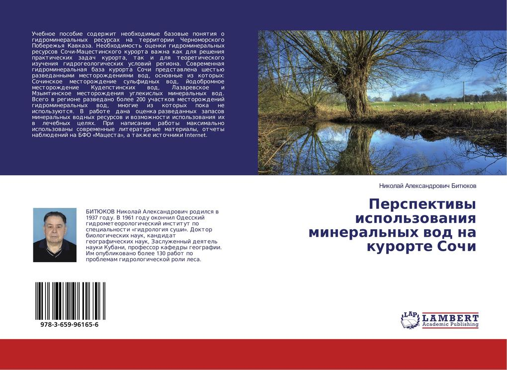 Perspektivy ispol'zovaniya mineral'nyh vod na kurorte Sochi als Buch (kartoniert)