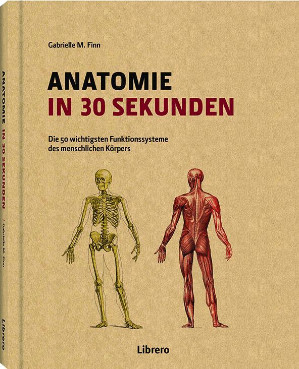 Anatomie in 30 Sekunden als Buch (gebunden)
