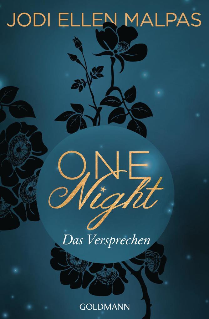 One Night - Das Versprechen als eBook epub