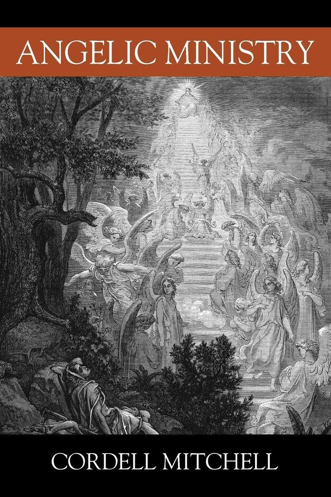 Angelic Ministry als Taschenbuch