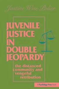 Juvenile Justice in Double Jeopardy als Taschenbuch