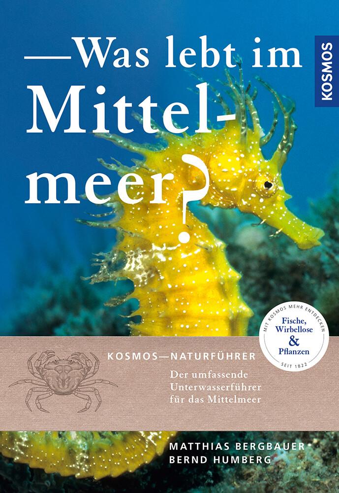 Was lebt im Mittelmeer? als Buch (kartoniert)