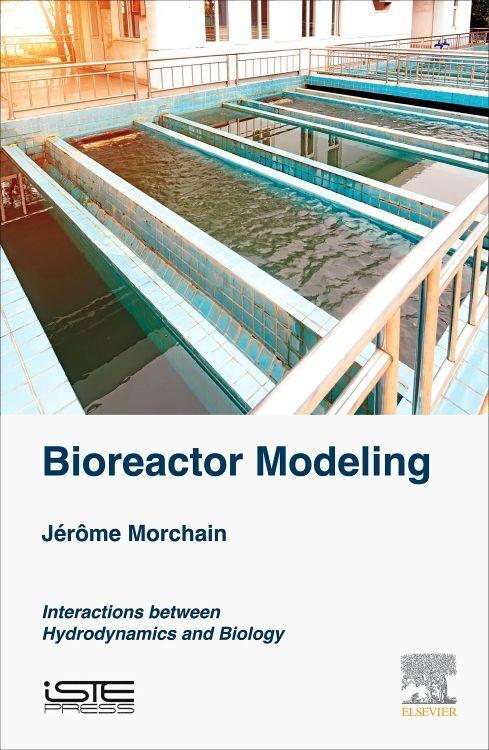 Bioreactor Modeling als Buch (gebunden)
