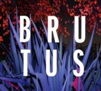Burst als CD