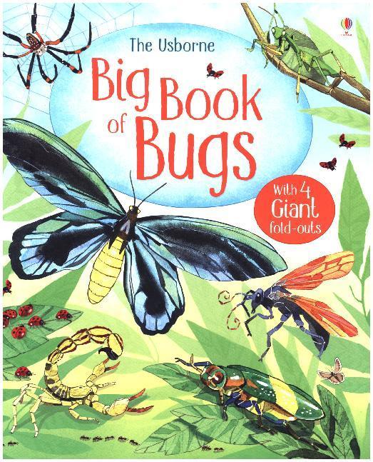 Big Book of Big Bugs als Buch (gebunden)