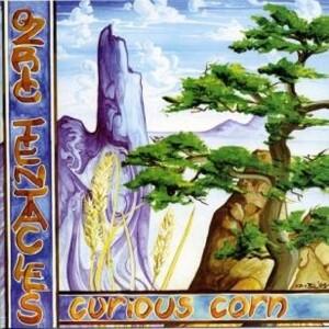 Curious Corn als Vinyl