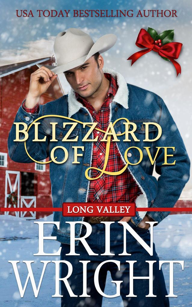 Blizzard of Love - A Western Holiday Romance Novella (Long Valley Romance, #2) als eBook epub