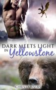 Dark Meets Light in Yellowstone (Yellowstone Mates BBW Paranormal Romance, #4)