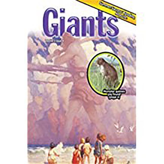Summer Success Reading: Theme Magazine 4, 5-Packs Grade 2 als Taschenbuch