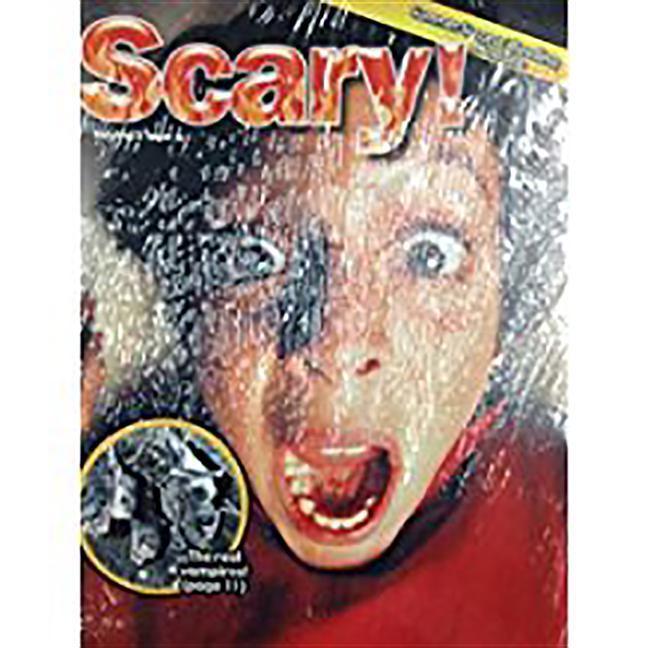 Summer Success Reading: Theme Magazine 6, 5-Packs Grade 5 als Taschenbuch