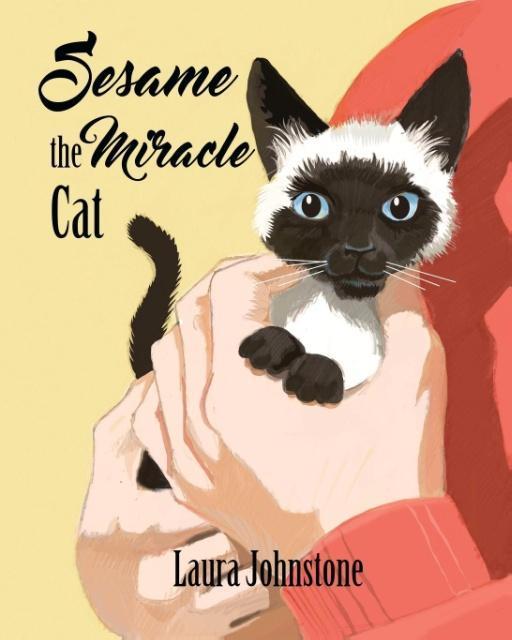 Sesame the Miracle Cat als Taschenbuch