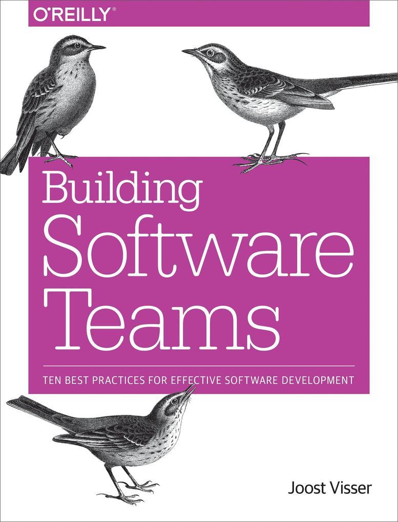 Building Software Teams als Taschenbuch