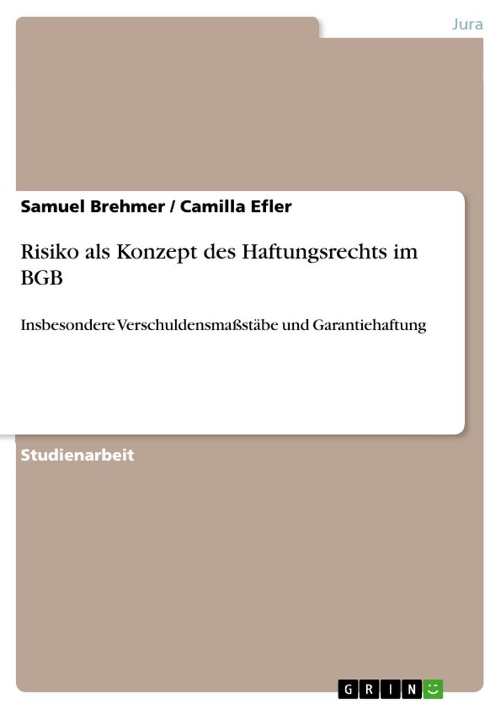 Risiko als Konzept des Haftungsrechts im BGB als eBook pdf