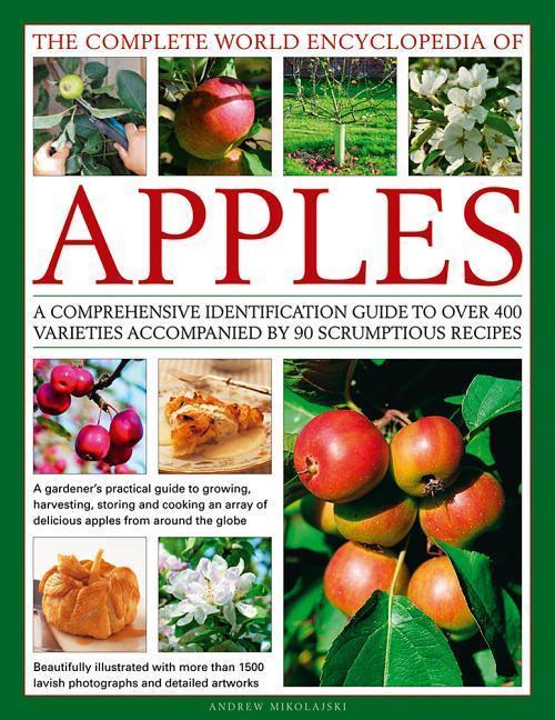 The Complete World Encyclopedia of Apples als Buch (gebunden)