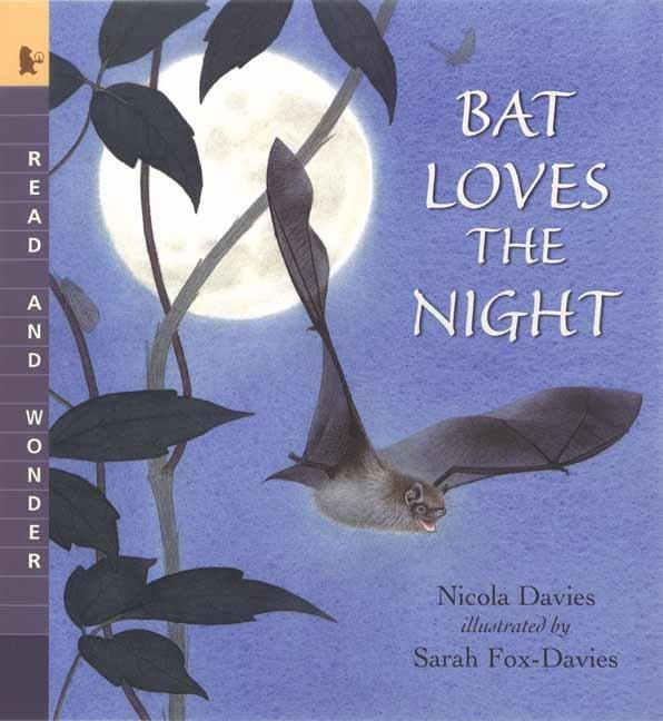Bat Loves the Night als Taschenbuch