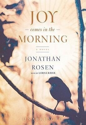 Joy Comes in the Morning als Hörbuch CD