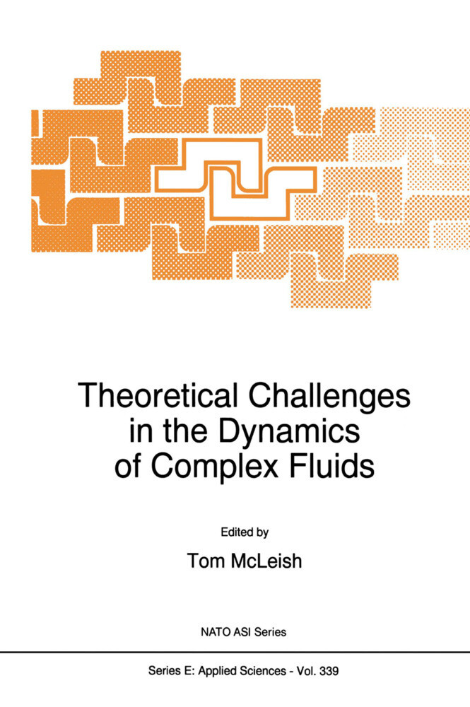 Theoretical Challenges in the Dynamics of Complex Fluids als Buch (gebunden)