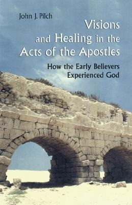 Visions and Healing in the Acts of the Apostles als Taschenbuch