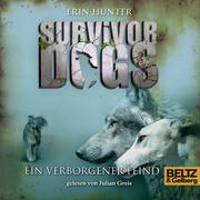 Survivor Dogs. Ein verborgener Feind