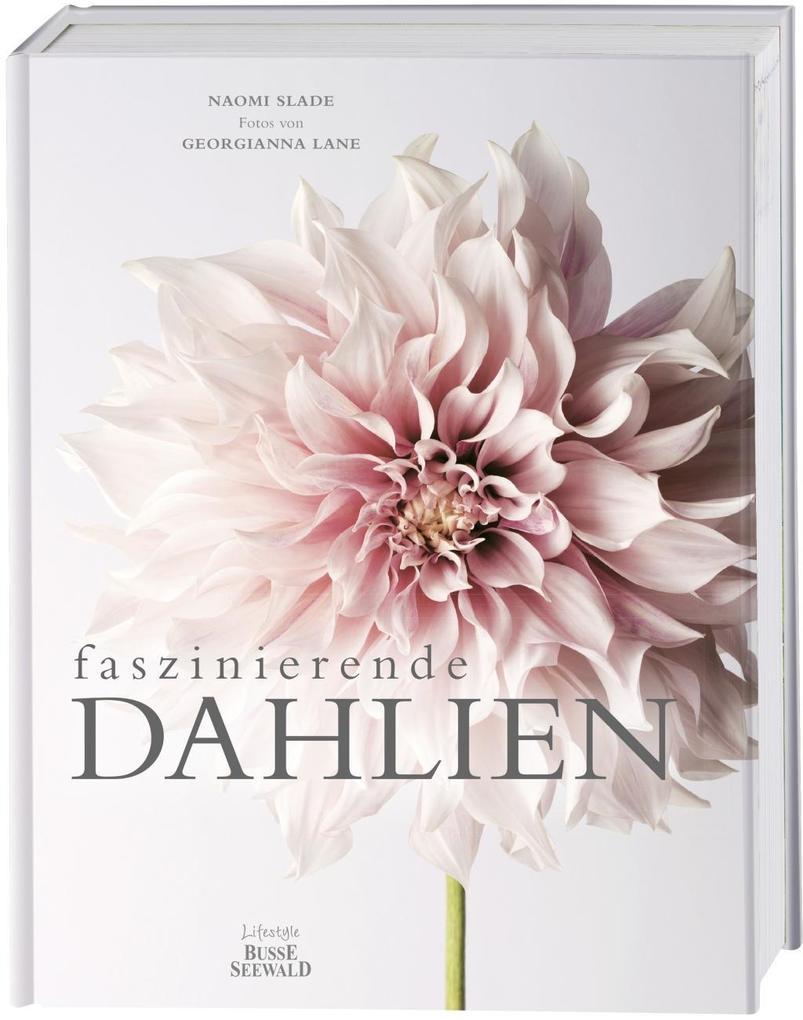 Faszinierende Dahlien als Buch (gebunden)