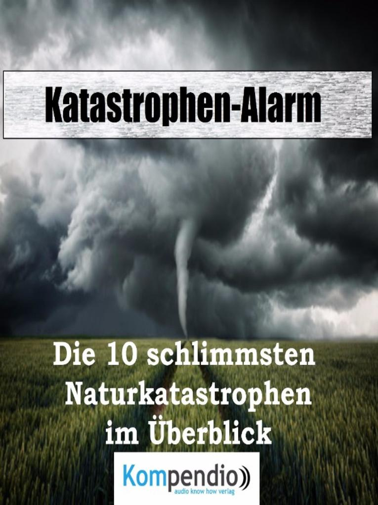Katastrophen-Alarm: als eBook epub