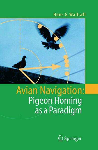 Avian Navigation als Buch (gebunden)