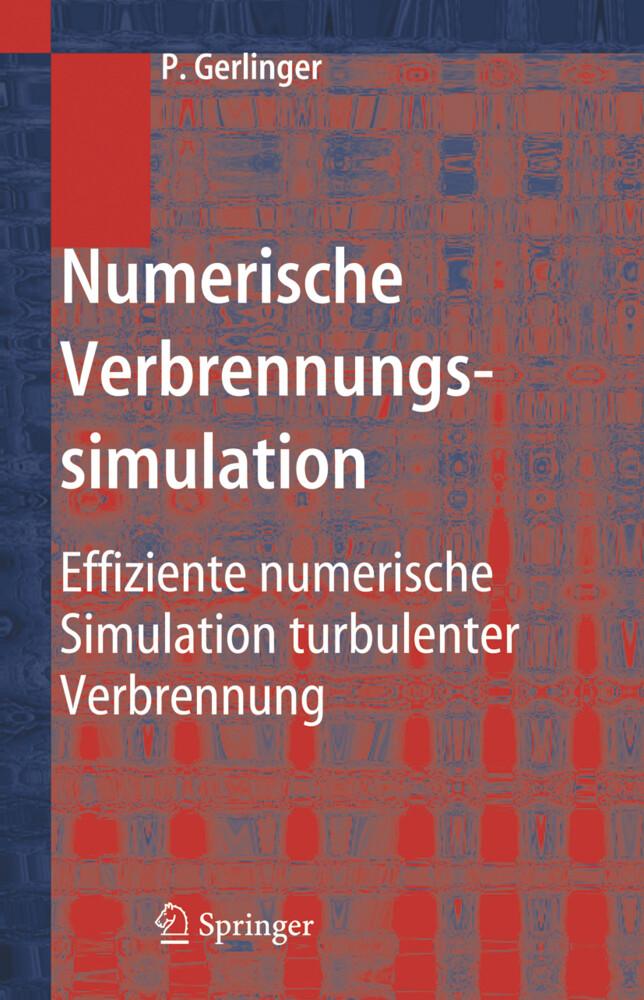 Numerische Verbrennungssimulation als Buch (gebunden)
