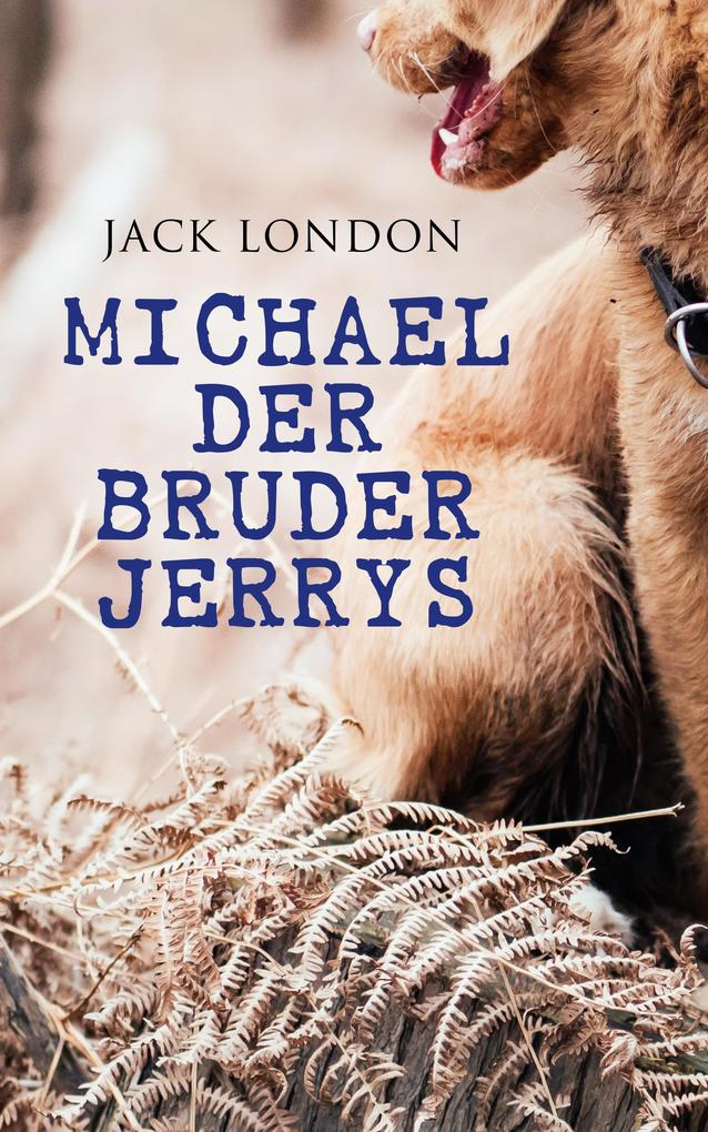 Michael der Bruder Jerrys als eBook epub