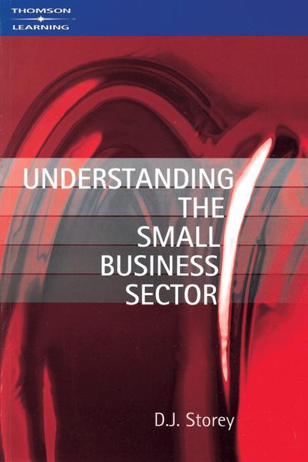 Understanding the Small Business Sector als Buch (kartoniert)