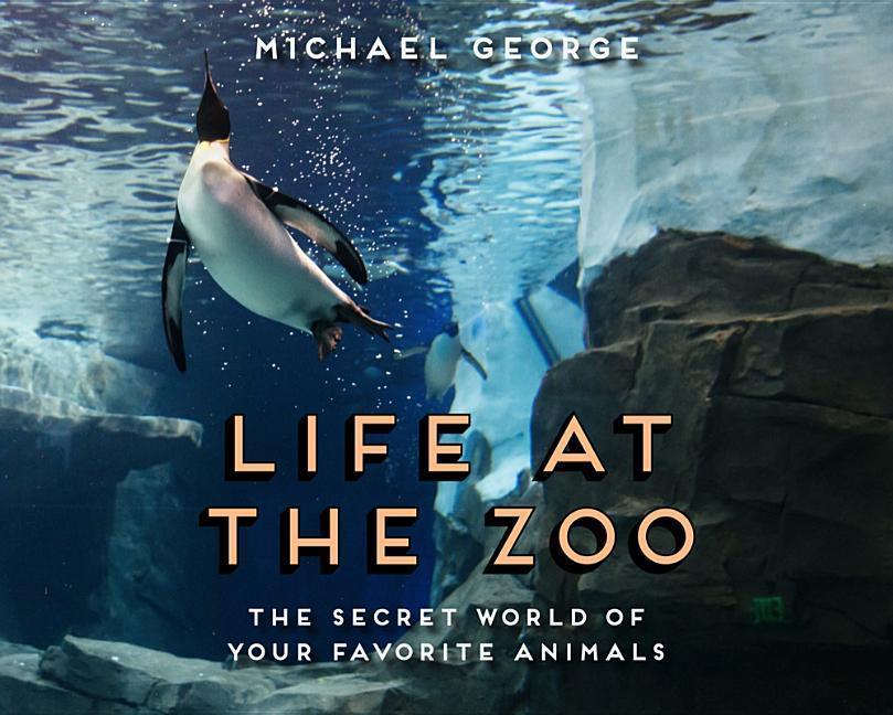 Life at the Zoo als Buch (gebunden)
